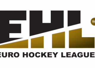 Logo EHL - Domo Sports Grass