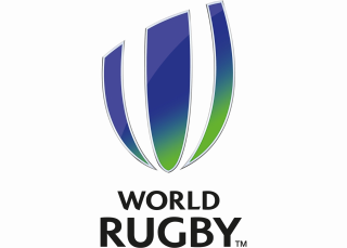 Logo World Rugby - Domo Sports Grass